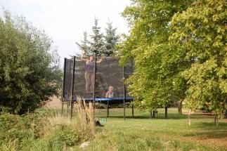 das Trampolin im Garten
